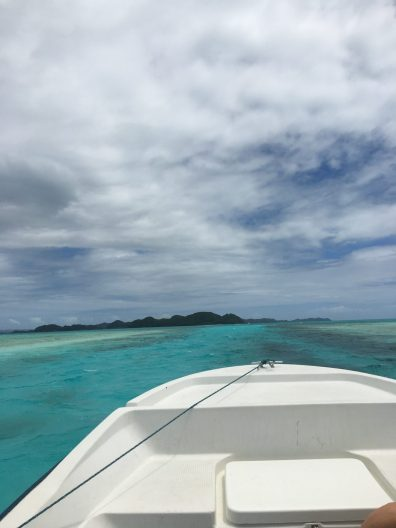 The bow of white boat is in the foreground, floating on aquamarine water near Palau. Shoreline can be seen in the distance, covered with short trees.