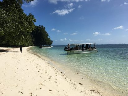A small dive boat pulls up to a sandy beach in Palau. There are about 6 people on the dive boat, and one person standing on the beach.