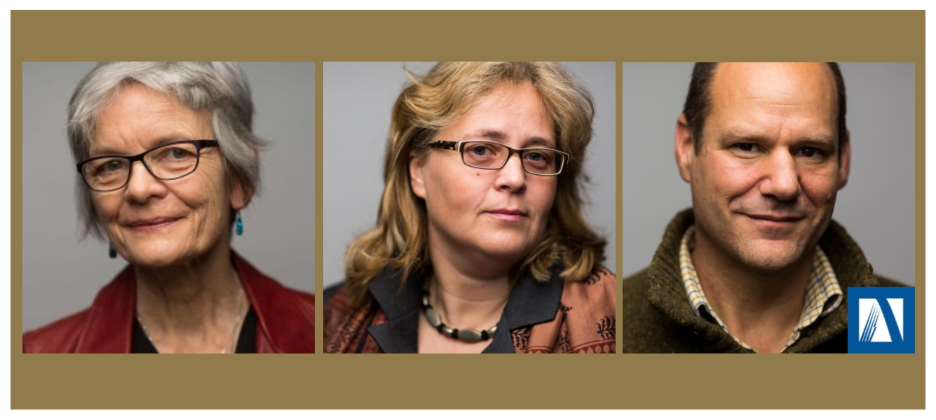 3 individual head shots lined up on a gold background.