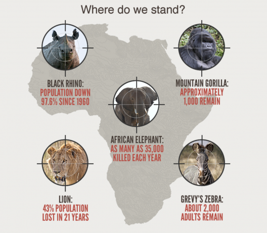 A drawn map of Africa is in the background with 5 different images of endangered animals. Each animal's photo has a crosshair overlayed on top.