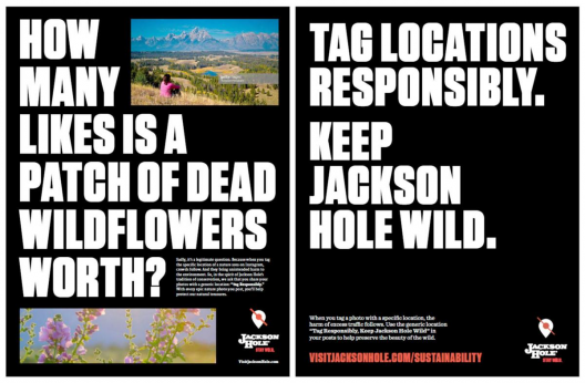 """A graphic taken from the Jackson Hole News and Guide reads: """"How many likes is a patch of dead wildflowers worth? Tag locations responsibly. Keep Jackson Hole wild."""""""