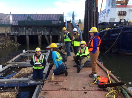 Six people are seen in bright yellow safety vests and hard hats standing, kneeling, or sitting on a wooden pier. The person kneeling closest to the water's edge is the focus of attention for the others in the picture.